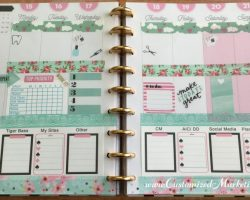 Happy Planner Spread Pink and Teal